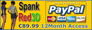 PayPal 12 months 79.99