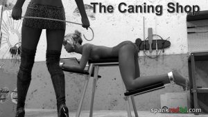 Caning Shop Cane Caned
